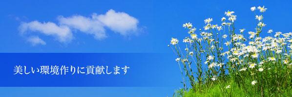 128489_ext_38_1.jpg