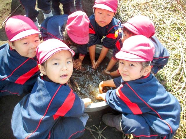 聖母幼稚園