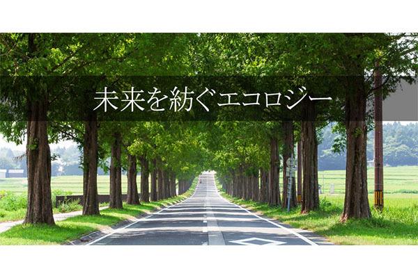 1324012_ext_38_1.jpg