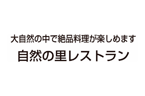 1377479_ext_38_1.jpg