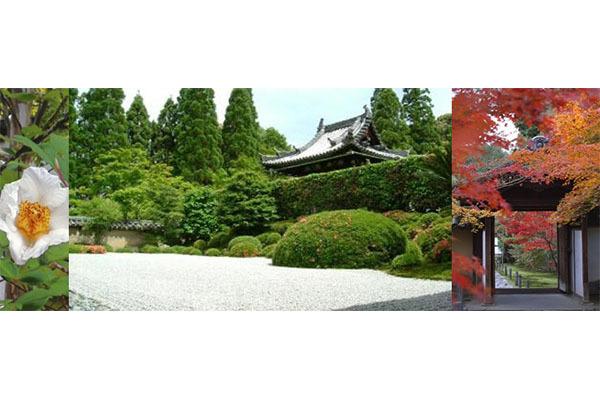京田辺市観光協会