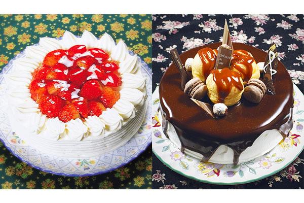 シューベルト ケーキ