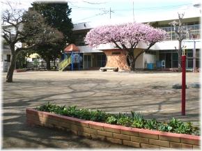 学校法人実生学園 つるま幼稚園