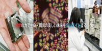 9355_ext_38_2.jpg