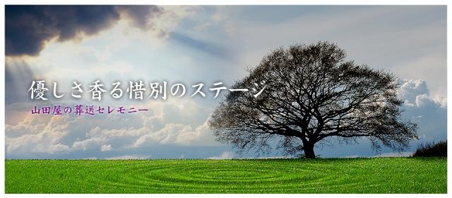 99762_ext_49_0.jpg