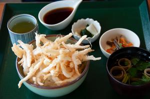 富山湾の宝石シロエビの天丼