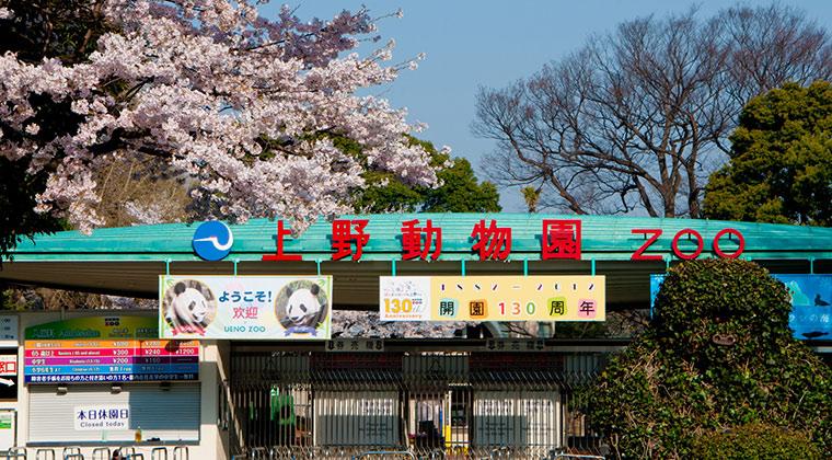 GWこどもの日 子供入場無料①:『恩賜上野動物園』(東京都台東区)